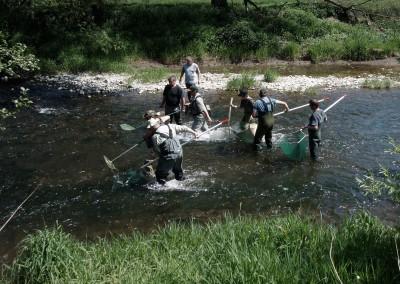Gewässerökologie